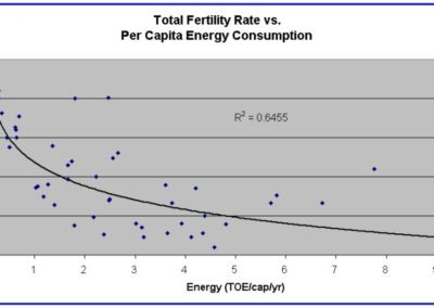 Fertility and energy consumption
