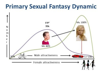 Figure 11. Page 26 Primary Sexual Fantasy Dynamic